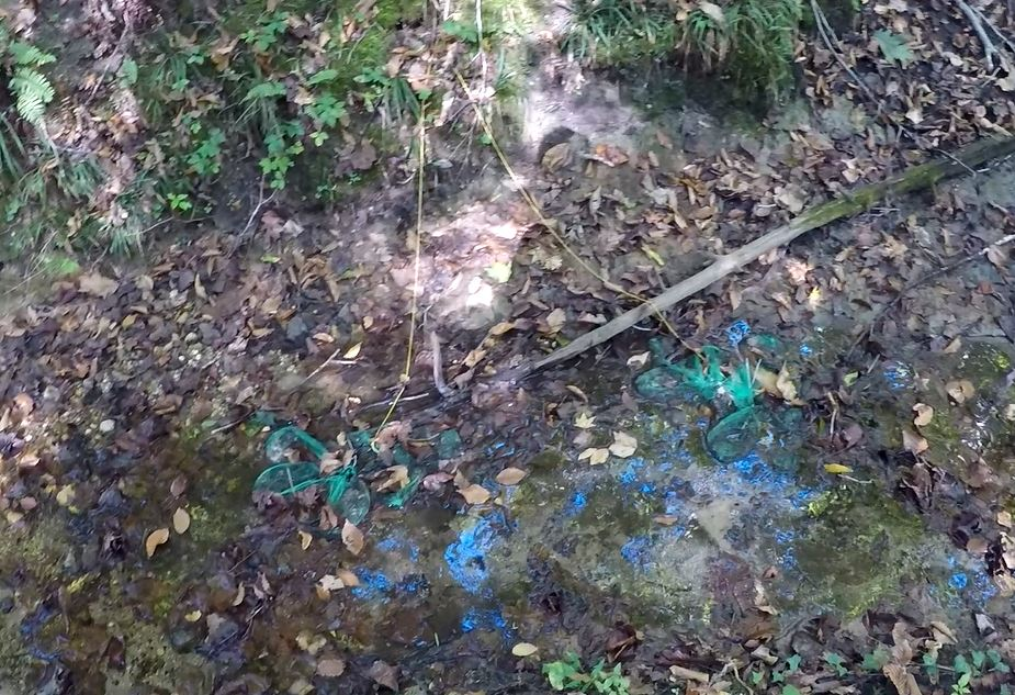 A set of leaves put into bags resting in a stream.