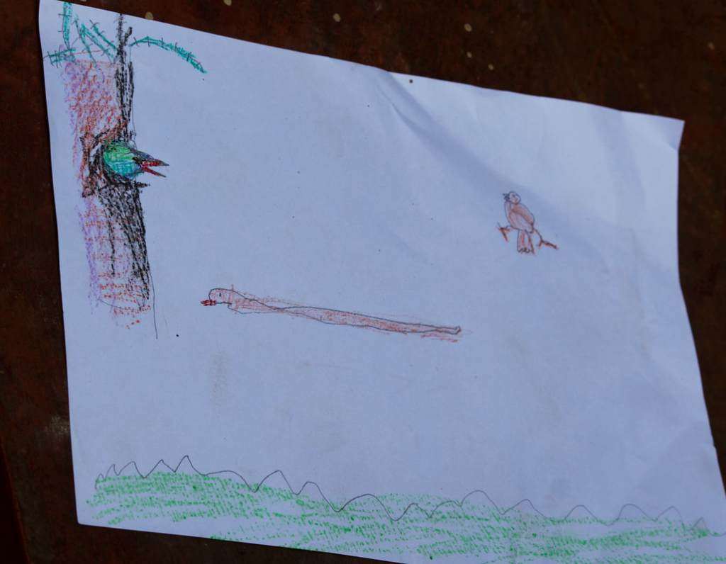 A children's drawing of birds