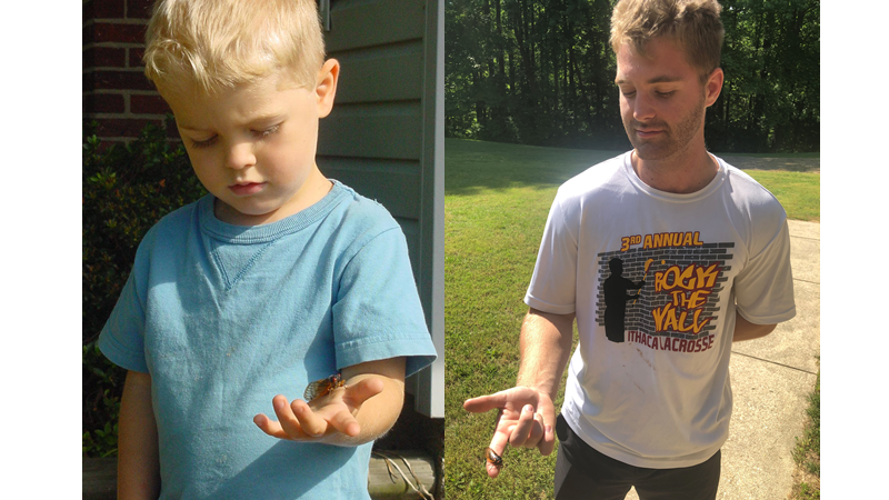 Picture showing boy with cicada in 2004 and 2021.
