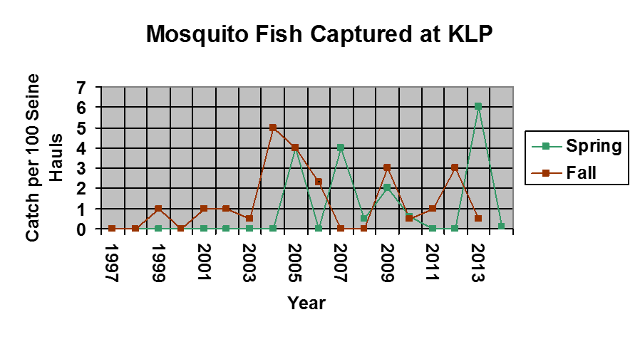 A graph of mosquitofish caught from 1997-2015