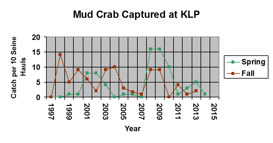 A graph showing the number of mud crab caught from 1997-2015
