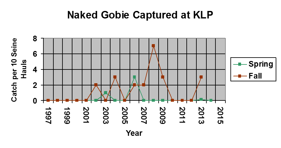 A graph of naked goby caught between 1997-2015