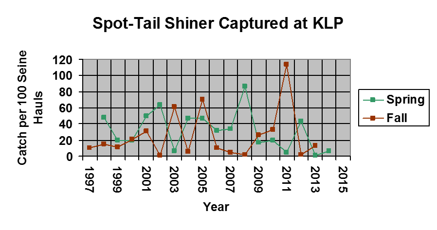 A graph showing the amount of Spot-Tailed Shiner caught from 1997-2015