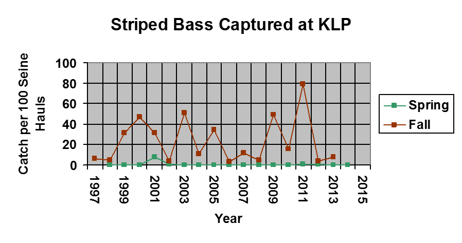 A graph showing the amount of striped bass caught from 1997-2015