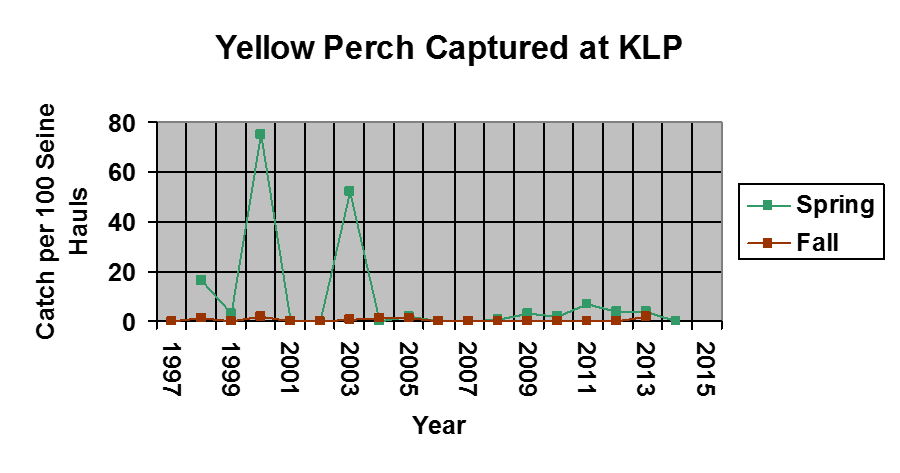 A graph of yellow perch caught during 1997-2015